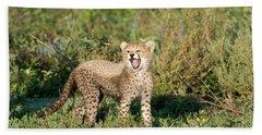 Cheetah Cub Acinonyx Jubatus Yawning Hand Towel