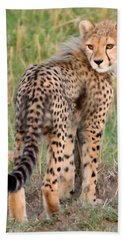 Cheetah Cub Looking Your Way Hand Towel by Tom Wurl