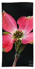 Cherokee Chief Dogwood Bloom Bath Towel