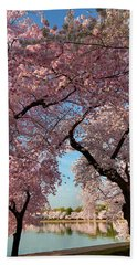 Cherry Blossoms 2013 - 024 Hand Towel