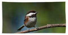 Chestnut Backed Chickadee Perched On A Branch Bath Towel