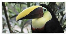 Hand Towel featuring the photograph Chestnut-mandibled Toucan by Teresa Zieba