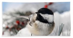 Chilly Chickadee Hand Towel by Christina Rollo