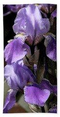 Chris' Garden - Iris 4 Hand Towel by Stuart Turnbull