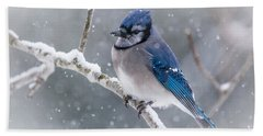 Christmas Card Bluejay Bath Towel by Cheryl Baxter