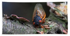 Cicada - The Red-eyed Monster Bath Towel by Yvonne Wright