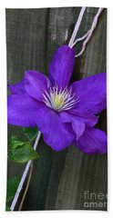 Bath Towel featuring the photograph Clematis On A String by Jeremy Hayden