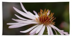 Hand Towel featuring the photograph Climbing Aster by Paul Rebmann