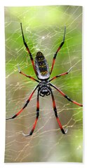 Close-up Of A Golden Silk Orb-weaver Hand Towel by Panoramic Images