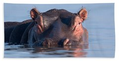 Close-up Of A Hippopotamus Submerged Hand Towel by Panoramic Images