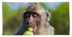Closeup Monkey Eating Cucumber Hand Towel