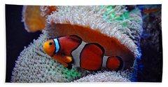 Bath Towel featuring the photograph Clown Fish by Savannah Gibbs