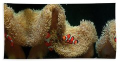 Clownfish Swimming Underwater Near Coral Hand Towel