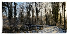 Bath Towel featuring the photograph Cold Morning by Felicia Tica