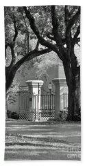 College Of Charleston Gate Hand Towel
