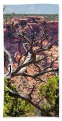 Colorado National Monument Dead Branches Bath Towel