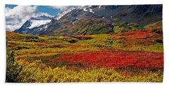 Colorful Land - Alaska Hand Towel