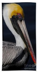 Colors Of A Pelican Hand Towel by Quinn Sedam