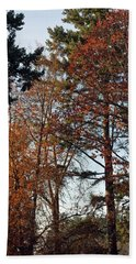 Colors Of Autumn Hand Towel by Tikvah's Hope