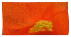 Hand Towel featuring the photograph Colors Of The Sun by Patti Whitten