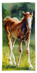 Colt In Green Pastures Hand Towel by Bonnie Rinier