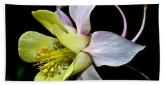 Columbine Bath Towel by Jane McIlroy
