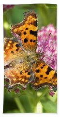 Comma Butterfly Hand Towel by Richard Thomas