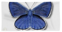 Common Blue Butterfly - Polyommatus Icarus Butterfly Naturalistic Painting - Nettersheim Eifel Bath Towel