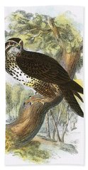 Common Buzzard Bath Towel