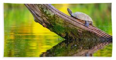 Common Map Turtle Hand Towel