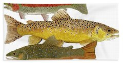 Bath Towel featuring the painting Common Trout  Rainbow Brown And Brook by Thom Glace