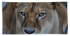 Concerned Lioness Bath Towel