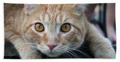 Cool Cat Named Calvin Bath Towel