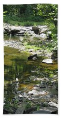 Bath Towel featuring the photograph Cool Waters by Ellen Levinson