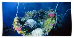 Corals On Ship Wreck Hand Towel