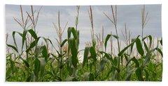 Corn Field Hand Towel by Laurel Powell