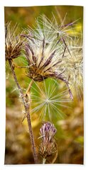 Hand Towel featuring the photograph Cotten Grass by Jim Thompson