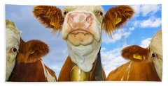 Cow Looking At You - Funny Animal Picture Hand Towel
