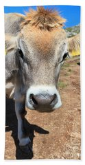 Cow On Alpine Pasture Bath Towel by Antonio Scarpi