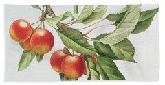 Crab Apples Hand Towel by Sally Crosthwaite