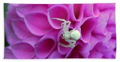 Crab Spider And Dahlia Hand Towel