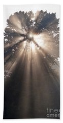 Crepuscular Rays Coming Through Tree In Fog At Sunrise Hand Towel