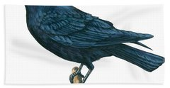 Crow Hand Towel by Anonymous