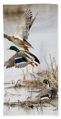 Crowded Flight Pattern Hand Towel by Mike Dawson