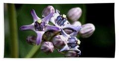 Crown Flower - Purple Hand Towel by Ramabhadran Thirupattur