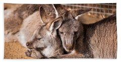 Cuddling Kangaroos Bath Towel