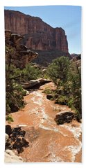 Culvert Canyon Flash Flooding Shortly Hand Towel