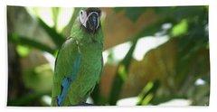 Curacao Parrot Bath Towel