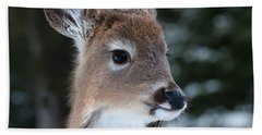 Curious Fawn Hand Towel