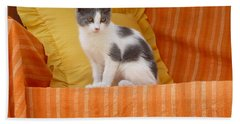 Hand Towel featuring the photograph Cute Kitty by Vicki Spindler